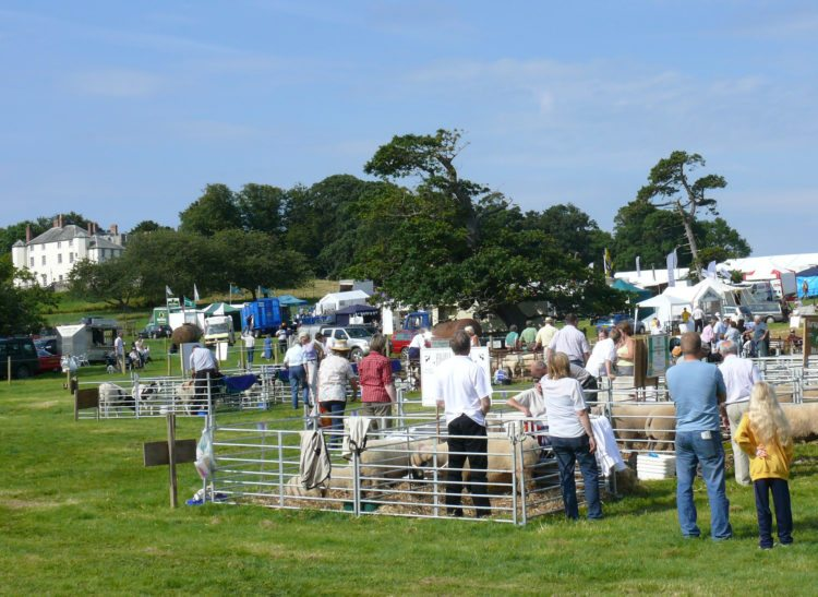 Woolsery Agricultural Show, Clovelly